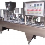 Filling and capping machines