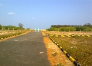plot for sale in periyapanicherry