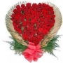 Flowers & Gifts Online Shop + 91-8468869001