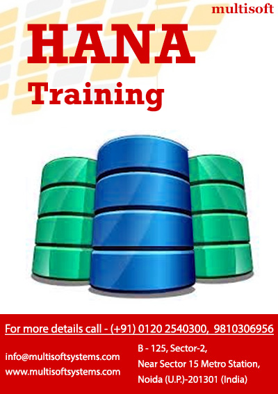 Hana training in noida from multisoft systems – get ready to ride to the top!