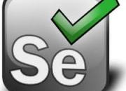 Best Selenium Training Institute in Delhi NCR