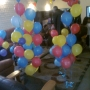 Birthday party planner / balloon decorator