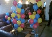 Birthday party planner / balloon decorator