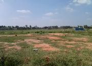 Kannamangala Main road 6 acres land for sale Rs. 6.5cr/ acre