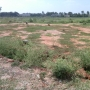 Sampigaihalli Main road 2 Acres Land for Outright Rs. 3200/ sft