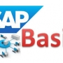 SAP BASIS TRAINING INSTITUTE IN CHENNAI ADYAR 8056102481…