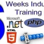 6 Months Industrial Training in B Tech