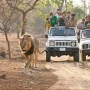 Resorts in Gir- New Year Packages Deal and Discounts