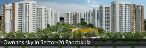 3 bhk apartment for sale sec-20