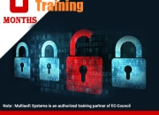 Boost your knowledge and skills with advanced ethical hacking training in noida from multi