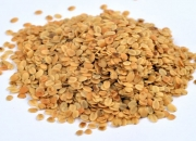 Dhana dal by Uma Food Products
