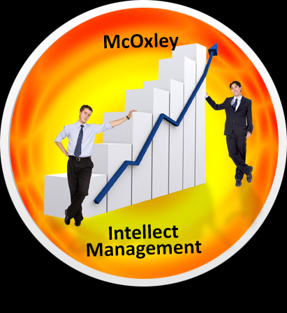 Certified business analyst training program