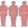 Get Treatment For Obesity Through Homeopathy