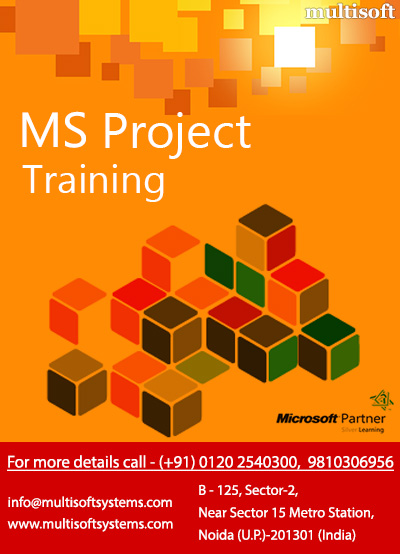 Ms project training,ms project management training
