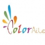 Specialized in Designing- Color Ailes Design LLP