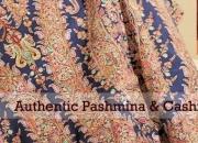 The Furbox - Online Megastore of Pure Pashmina Shawls