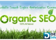 Affordable search engine optimization company