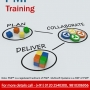 Be Endowed with Career Enhancing Skills with Project Management Training from Multisoft Sy