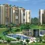 Petioles | Gurgaon Townships