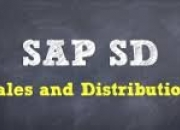 "Best sap sd training in chennai adyar ""peridot systems"" 8056102481..."