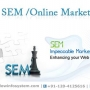 SEO ( Search Engine Optimization )