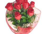 Valentine Roses: The Perfect Romantic Gift to Express Love