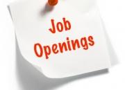 wanted telecaller jobs
