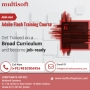 Adobe Flash Training Course – Get Trained on a Broad Curriculum that Makes One Job-ready