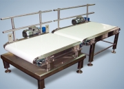Conveyor Manufacturers | Belt Conveyor Manufacturers in India