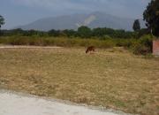 Residential Projects,Green City,  Dehradun