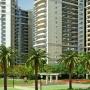 Prateek Fedora Resale Flats in Noida @9211945658 - Noida