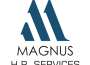Manpower Solutions Delhi Placement Consultants Delhi Ncr Executive Search Services Delhi M