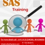 Turn Your Dreams of a Business Analytics Career into Reality with SAS Training from Multis
