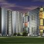 Alpine Viva Review Project Bangalore