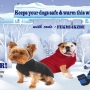 Best Online dog winter apparels at 10% discount