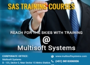 SAS training courses – Reach for the Skies with Training from Multisoft Systems