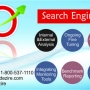 SEO Services Company in India-Animdezire