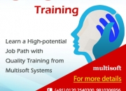 SAS Training in Noida – Enter into a High-potential Job Path with Quality Training
