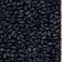 groundnut exporters in gujarat