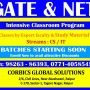 GATE and NET coaching for CS and IT in Raipur