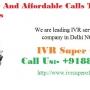 IVR Service Provider Company in Delhi NCR and India