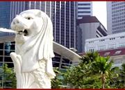 Study in Singapore Consultant