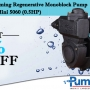 Get Sharp Hydro Self Priming Regenerative Monoblock Pump Mini 5060 (0.5HP) Online