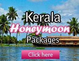 Munnar honeymoon package. ex chennai with train tickets.