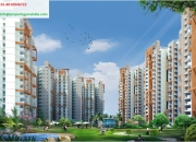 Buy 1,2,3 BHK Flats in Noida Extension-Amrapali Spring Meadows