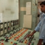 The Storehouse of Energy— Energo India