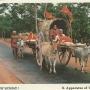 Jagannath Darshan | Jagannath Darshan Puri | Jagannath Yatra