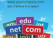 SathyaTechnosoft - Best domain registration service India