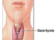Solve Your Hyperthyroid Problem With Homeopathy