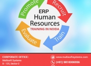 Let Success Follow You in Every Aspect of Your Career with this Human Resource Training